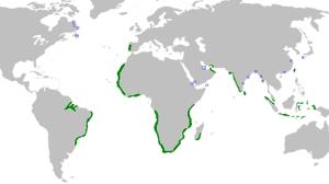Portugals Kolonialreich im 16. Jahrhundert - ccWikipedia