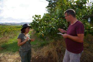 Gespräch mit einer Avocado-Landwirtin