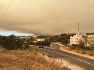 Auswirkungen von Waldbränden